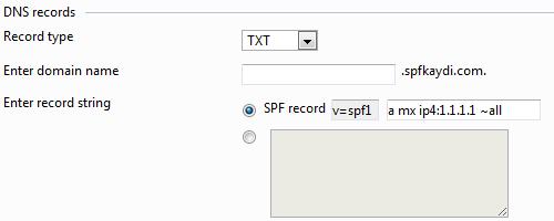 Plesk SPF Kaydı Ekleme dns settings spf